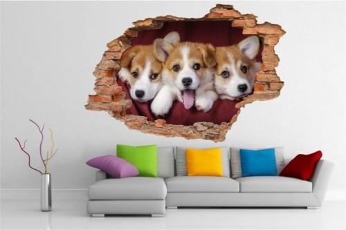 Naklejki Na Sciane Pies Psy Szczeniaki Zwierzeta Widok 3d 2116